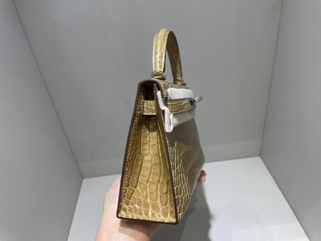 Hermès(爱马仕)Mini kelly ll Alligator shiny 亮面鳄鱼 奶茶色 金扣 顶级手缝 现货